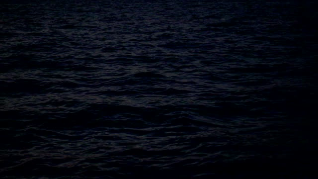 excitement on the sea surface at night