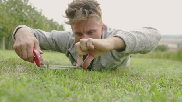 ms exciting man cutting grass with shears - perfezione video stock e b–roll