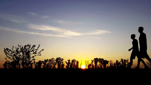 exercise silhouette in the country in the sunset - family trees stock videos and b-roll footage