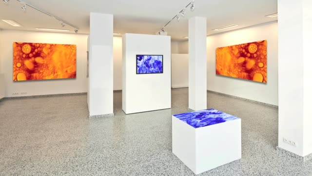 exhibition gallery, wall mounted art with museum style lighting