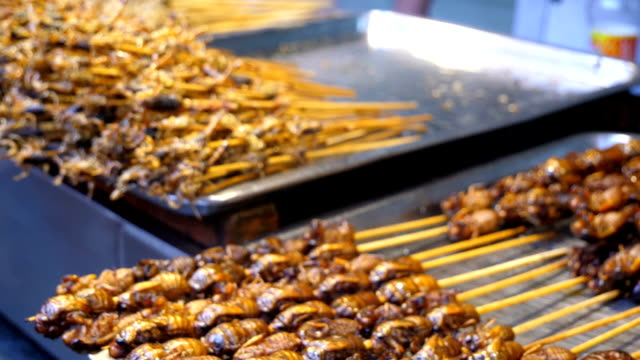 Exotic food in China video