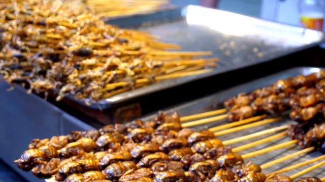 vidéos et rushes de nourriture exotique en chine - insecte