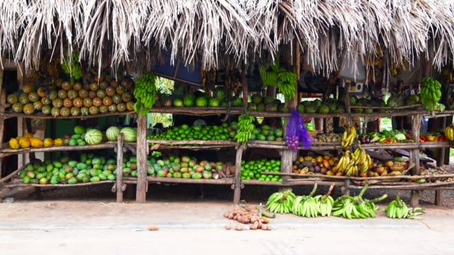 exotic fruits and vegetables shop on the street - cultura latino americana video stock e b–roll