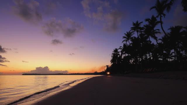 exotic island and beautiful sunrise on the beach. morning in punta cana, dominican republic - palm tree filmów i materiałów b-roll