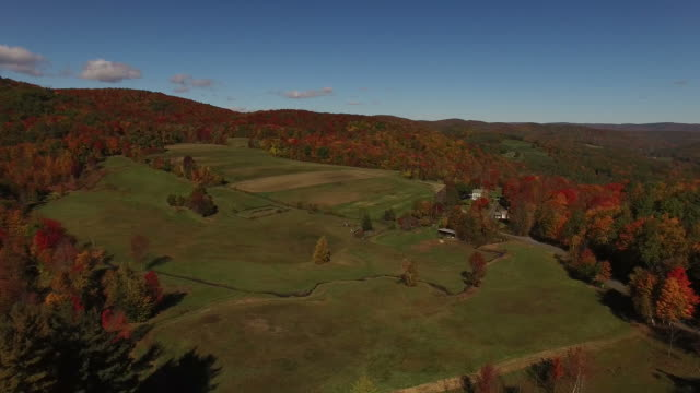Expansive Field Surrounded by Fall Colored Forest video
