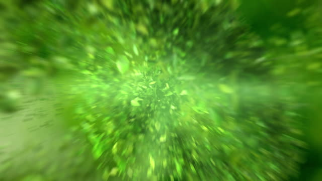 Exploding green tea leafs in 4K High quality exploding green leafs in 4K floral pattern stock videos & royalty-free footage