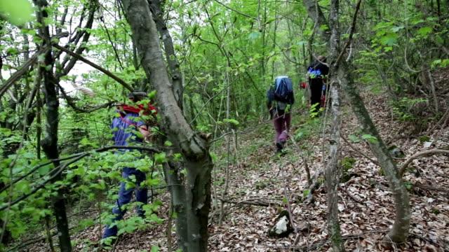 vidéos et rushes de explorateurs une randonnée sur un terrain extrême, d'escalade sur la montagne dans une forêt - paysage extrême