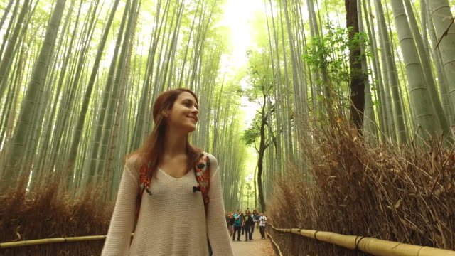 exploring japan - turysta filmów i materiałów b-roll