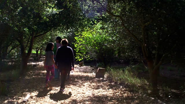 Exploring the Forest with My Family video