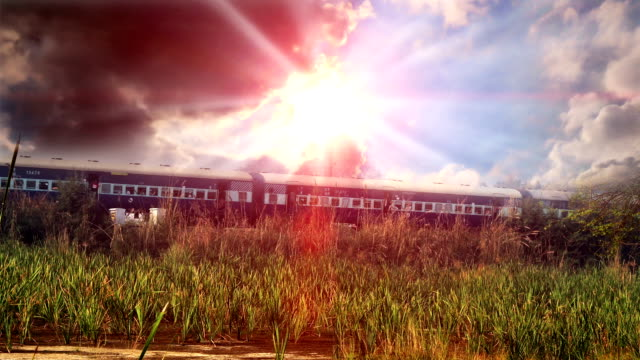 Express train passing through forest under the beautiful cloudscape video