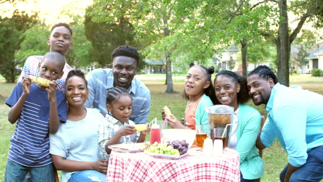 Extended African-American family having cookout video