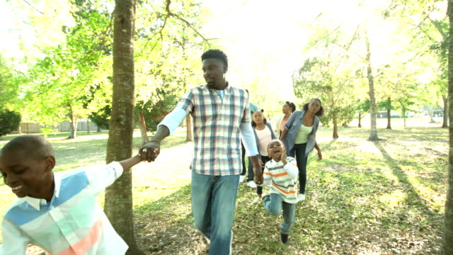 Extended African-American family walking in the park video