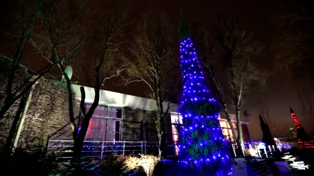 Exterior of modern house or restaurant, the Christmas lights are lit on the trees, in the night sky, camera movement, tree decorated with Christmas lights, tall tree lights, view from below video