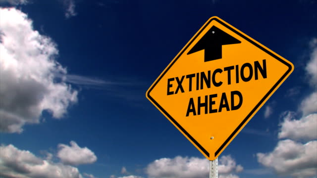 Extinction Sign video