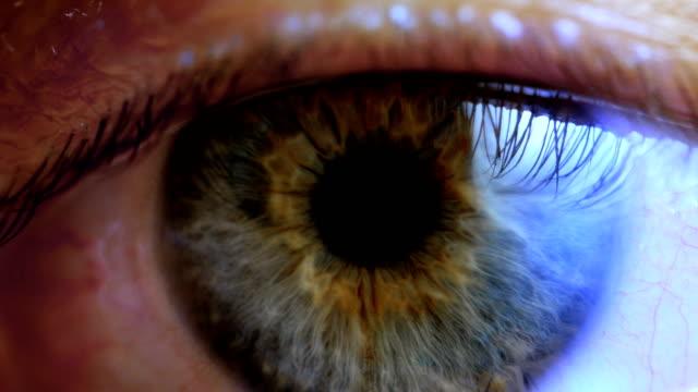 vidéos et rushes de extreme close up iris oeil humain - rétine