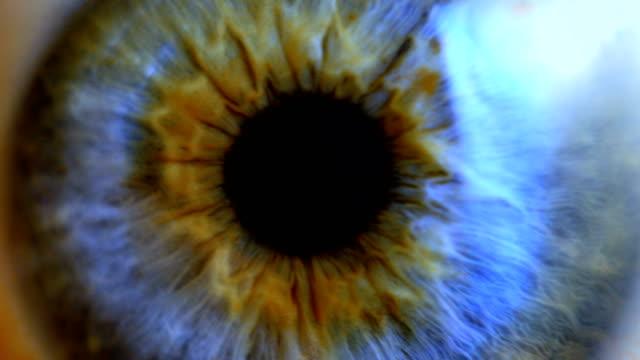 extreme close up human eye iris - wzrok filmów i materiałów b-roll