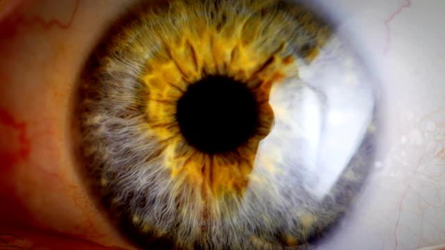 ekstremalnych zbliżenie ludzkiego oka irys. - wzrok filmów i materiałów b-roll