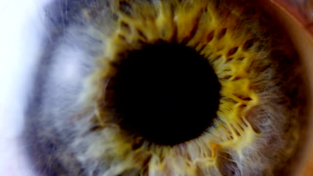 Extreme close iris en el ojo humano - vídeo