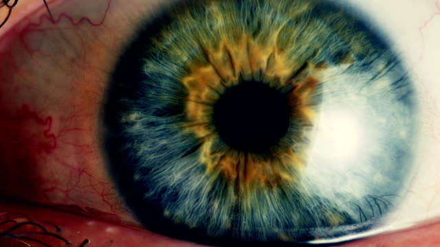 ekstremalnych zbliżenie ludzkiego oka iris - wzrok filmów i materiałów b-roll