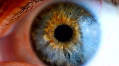 Extreme close up human eye iris Human eye iris contracting. Extreme close up. 4k stock videos & royalty-free footage