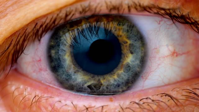 vidéos et rushes de très gros plan des yeux iris - rétine