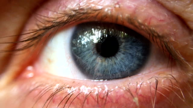 Extreme close up of a blue eye reflecting trees outside video