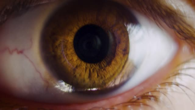 vídeos de stock e filmes b-roll de extreme close up of human eye iris, expanding and shrinking of pupil with some eye movements and blinking - castanho