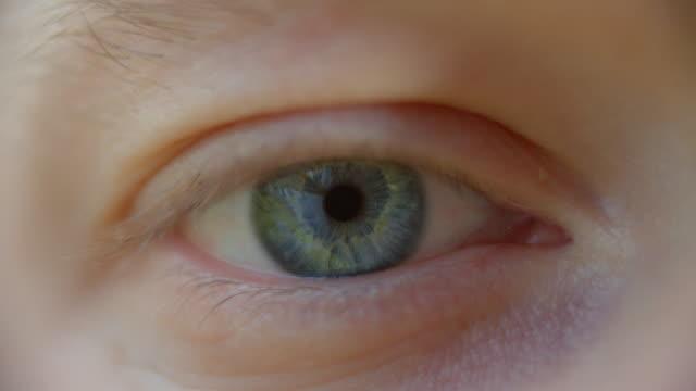 extrem närbild av människans blå ögonöppnande - male eyes bildbanksvideor och videomaterial från bakom kulisserna