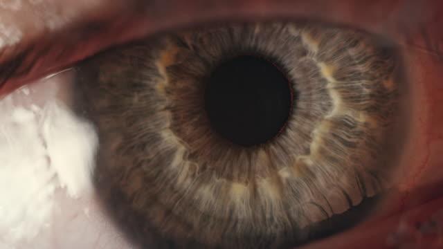 экстремальный крупным планом голубой человеческий глаз - близко к стоковые видео и кадры b-roll