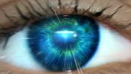 istock Extreme closeup on blue eye. Entering human mind 1172720584