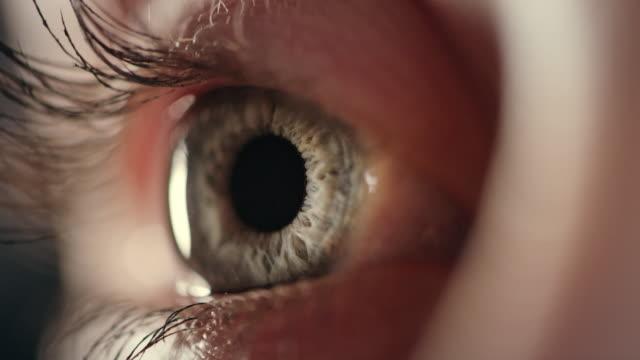 extreme closeup on blue human eye - near video stock e b–roll