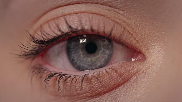 青い人間の目に極端なクローズアップ。 - まぶた点の映像素材/bロール