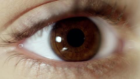 vídeos de stock e filmes b-roll de extreme closeup on brown human eye - castanho