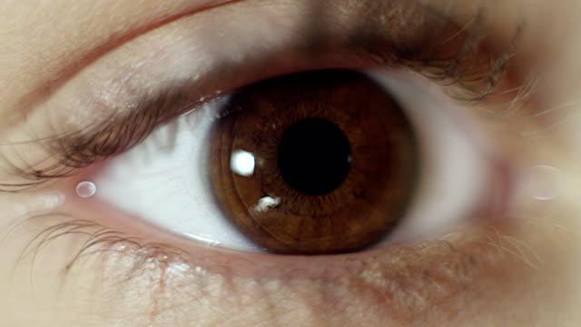 갈색 인간의 눈에 극단적 인 클로즈업 - 갈색 스톡 비디오 및 b-롤 화면