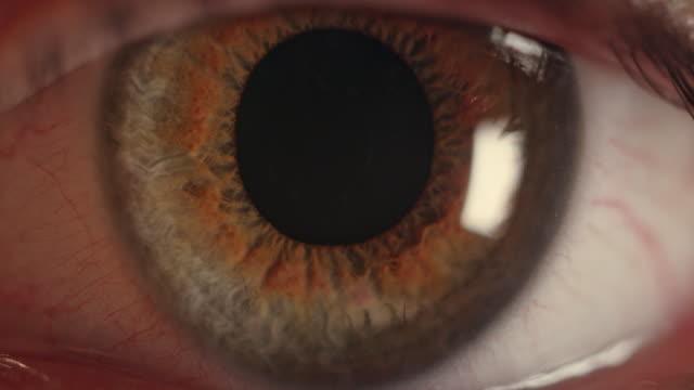 экстремальный coseup на коричневый человеческий глаз - близко к стоковые видео и кадры b-roll