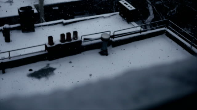 Extreme Weather Phenomena in City. Frozen and Snowy Urban Environment. Freeze, Frozen, Cold, Snow video