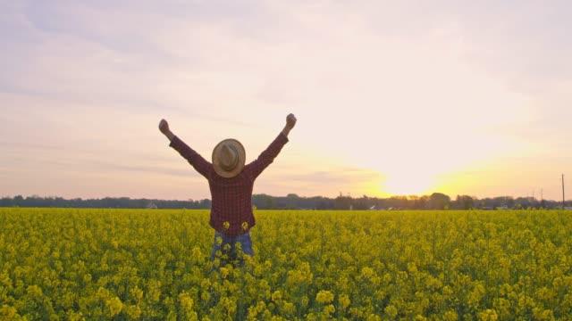 sprudlande bonde med armarna utsträckta i lugna, idylliska, lantliga raps fält vid solnedgången, realtid - tacksamhet bildbanksvideor och videomaterial från bakom kulisserna