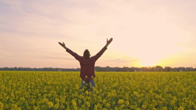 vídeos de stock, filmes e b-roll de agricultor exuberante com braços esticados em campo tranquila, idílica, rural canola por do sol, em tempo real - agradecimento