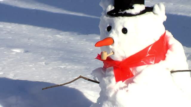 vídeos y material grabado en eventos de stock de eye falls out (hd - snowman