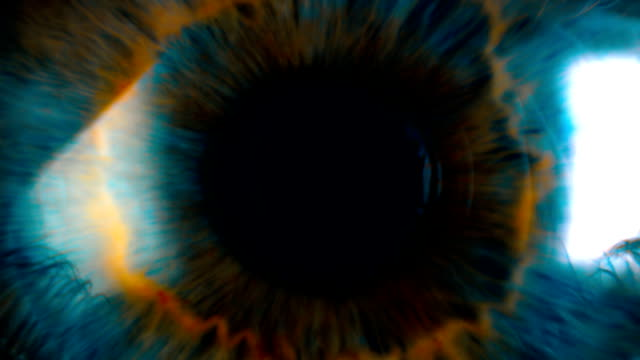 eye iris and pupil macro . many color correction options - optometrist stock videos and b-roll footage