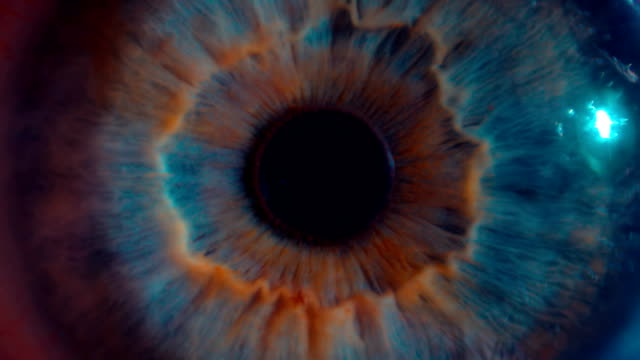 Eye iris and pupil macro . Many color correction options