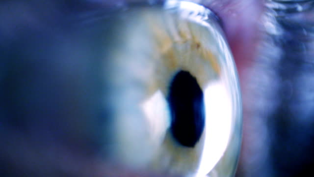 Eye iris and pupil macro video