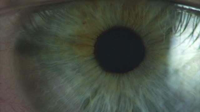 Eye Macro Video B - medical video