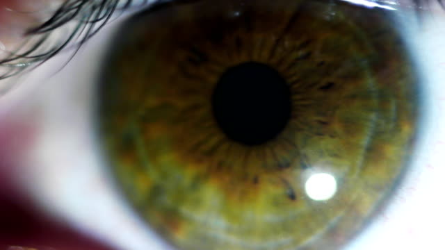 Eye macro Eye macro sideways glance stock videos & royalty-free footage