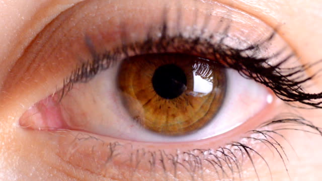 eye macro.zoom in - blinzeln stock-videos und b-roll-filmmaterial