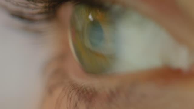 stockvideo's en b-roll-footage met macro close-up: eye movement bij het lezen van een tekst op een computerscherm - ooglid
