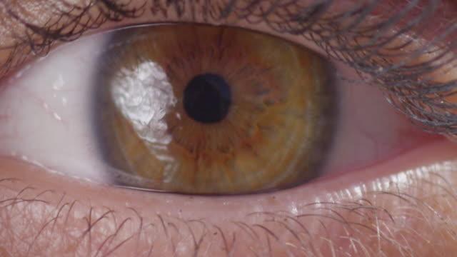 vidéos et rushes de oeil ouverture clignotement macro close up ralenti 200fps 4k - fard à paupières