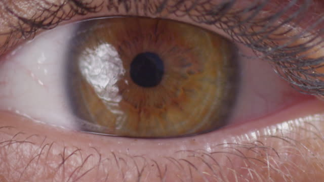 Eye Opening Blinking Macro Close Up Slow Motion 200fps 4K Shot on Red Weapon Digital Cinema Camera. eyeshadow stock videos & royalty-free footage
