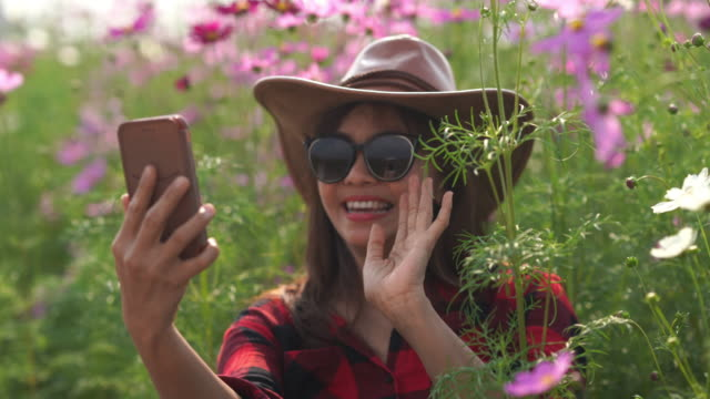 facial expression by Asian mature woman in cosmos meadow , relaxation with alternative lifestyle , retirement , using smart phone for selfie with flowers , hello and goodbye gesturing