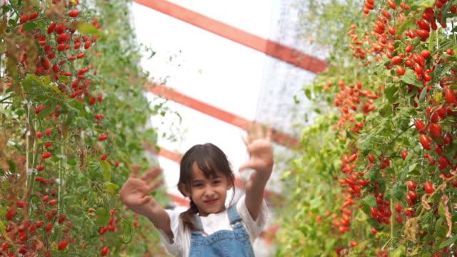 ansiktsuttryck av ung flicka i tomater oganic gård , gmo mat , biofood , alternativ ifestyle koncept , blåser en kyss, hej och adjö - blåsa en kyss bildbanksvideor och videomaterial från bakom kulisserna